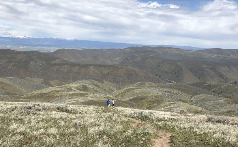 Umtanum Ridge Crest