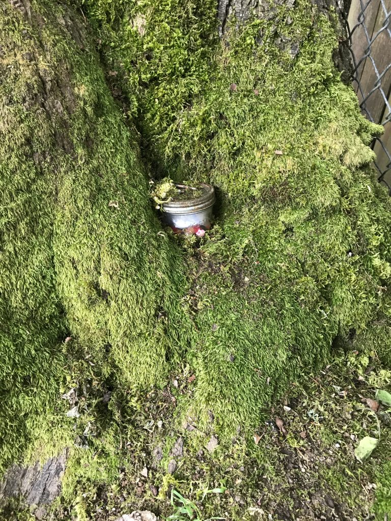Geocache in Westside Park