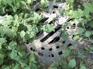 Geocache in manhole