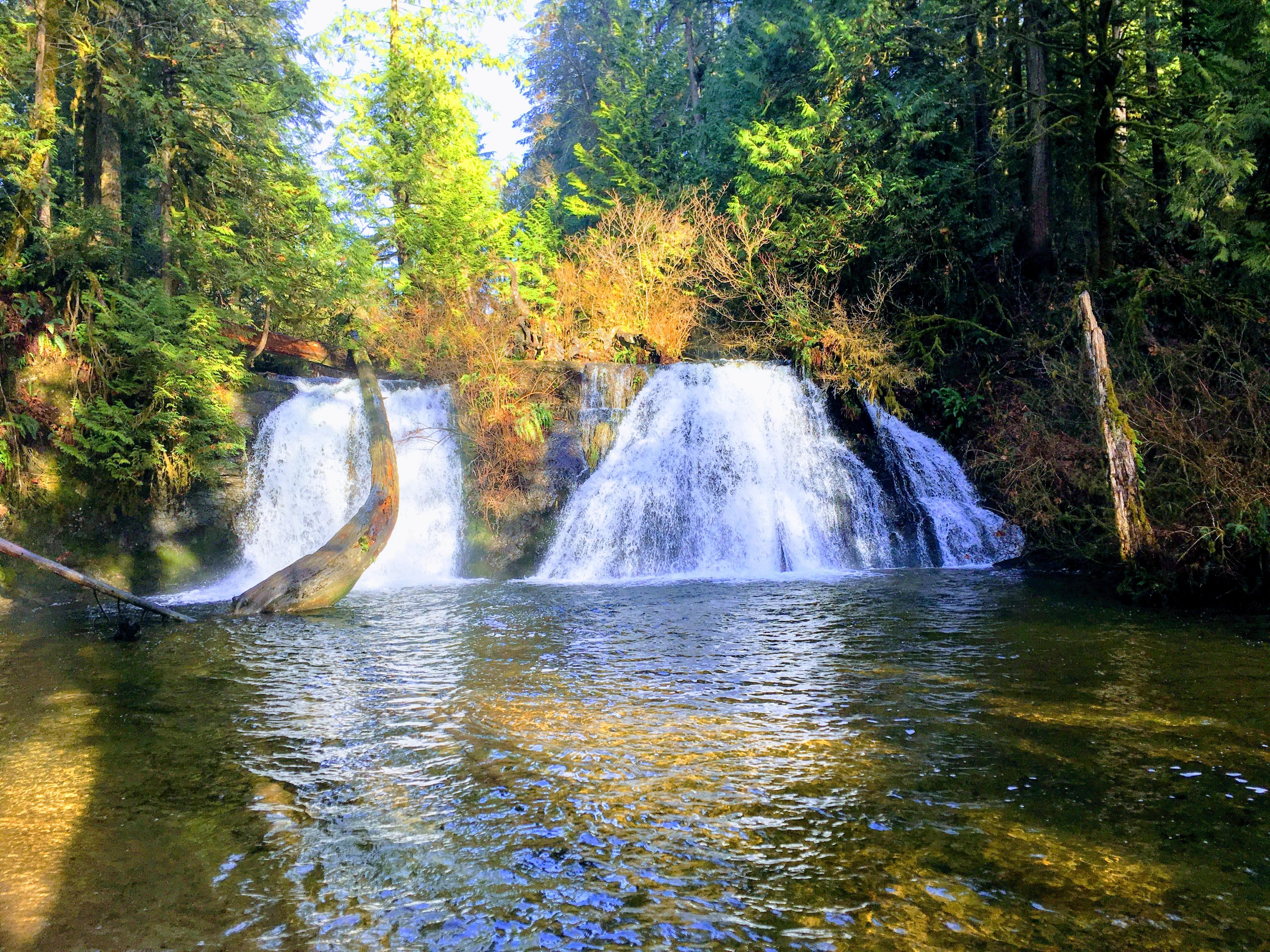 Cherry Creek Falls Connie Fan